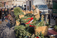 A shopper at a stand at the Union Square Greenmarket in New York on Wednesday, December 18, 2013 shops for Christmas decorations. Only a week to go until Christmas. (© Richard B. Levine)