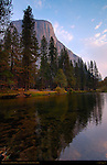 El Capitan at Dawn from Merced River in Autumn, Yosemite Valley, Yosemite National Park