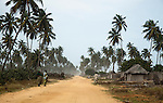 Fishing villages co-mingled with tall palm trees line the beach between Benin's capital of Cotonou and the historic town of Ouidah.  This dirt road along the beach that connects Cotonou and Ouidah is a pleasant and interesting drive.