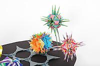 Nerves<br /> Nerve cells:  designer - Tomoko Fuse, folder - Donna Walcavage<br /> Sonobe type bacteria:  designer + folder - Doug Caine<br /> Radiolaria:  designer - Miuki Kawamura, folder - Rosalind Joyce<br /> Macrophage:  designer - Hongyi Wan, folder - Rosalind Joyce<br /> Magnifying glass:  designer - Pasquale D'Auria, folder - Rosalind Joyce