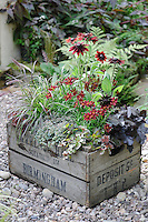 Autumn Containers 02