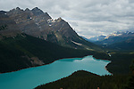 The turquoise blue color of Peyto Lake in the Canadian Rockies