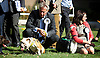 Westminster Dog of the Year 2016 <br /> in Victoria Tower Gardens, London, Great Britain <br /> 8th September 2016 <br /> organised by The Kennel Club and Dogs Trust together with dog loving MPs and Peers. <br /> <br /> Ian Paisley MP <br /> waits for the results with his Dog Trust rescue dog <br /> <br /> <br /> <br /> <br /> <br /> Photograph by Elliott Franks <br /> Image licensed to Elliott Franks Photography Services