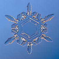 Snowflake Shashaiti - Stellar Plate Snowflake