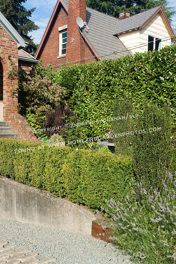 The mixed border of perennials and shrubs around the patio provide privacy in the front yard of this Seattle home.