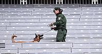 FUSSBALL INTERNATIONAL TESTSPIEL in Muenchen in der Allianz Arena Deutschland - Italien    29.03.2016  Ein Polizistin mit Sprengstoffhund auf der Tribuebe der Allianz Arena