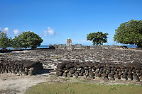 Marae Hauviri or Marae Taura'a-a-tapu, family temple of the Tamatoa clan, with large stone courtyard, ahu or altar and investiture stone, at Taputapuatea, at Te Po, in the Opoa valley, on the island of Raiatea, in the Leeward Islands, Society Islands, French Polynesia. This marae holds the Te-Papa-tea-o-Ruea, or white investiture stone, brought by the god Hiro to found the chiefdoms or ari'i on Raiatea. Hauviri was the welcoming marae which received visitors as they disembarked from their canoes. This site was a meeting place and sacrificial site for travellers from all over the Pacific. Picture by Manuel Cohen