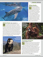 Publication in BBC Wildlife magazine, February 2015