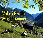 Val di Rabbi - estate
