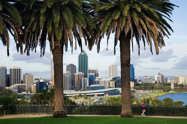 View across Kings Park to the Perth skyline.  Perth, Western Australia, AUSTRALIA.