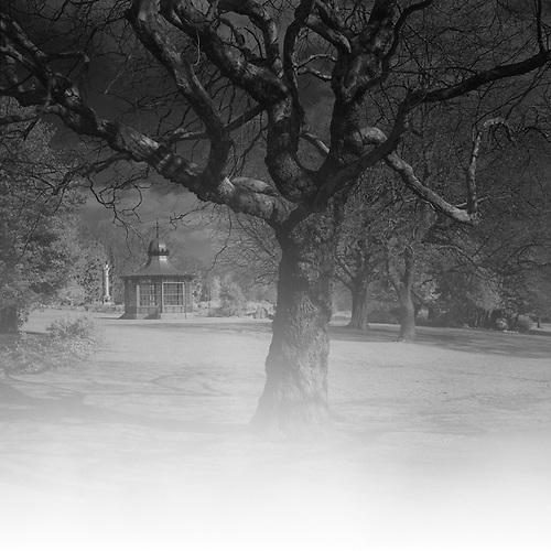 Weston Park, Sheffield