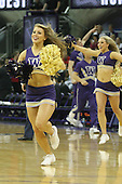 March 9, 2013:  Washington cheerleader Nikki Buchanan pumped up the crowed during a timeout against UCLA.  UCLA defeated Washington 61-54 at Alaska Airlines Arena Seattle, Washington....