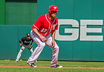 28 September 2014: Washington Nationals outfielder Nate Schierholtz takes a lead off second base as a pinch runner during play against the Miami Marlins at Nationals Park in Washington, DC. The Nationals shut out the Marlins 1-0, caping the season with the first Nationals no-hitter in modern times. The win also notched a 96 win season for the Nats: the best record in the National League. Mandatory Credit: Ed Wolfstein Photo *** RAW (NEF) Image File Available ***