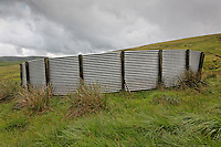 Corrugated iron Sheepfold, Cogshead near Wanlockhead, Southern Uplands, Scotland