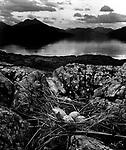 Gull's Nest, Skye, 1947