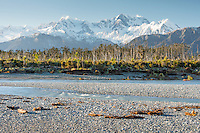 Mt. Cook and Mt. Tasman with Cook River in foreground, Westland National Park, West Coast, World Heritage Area, South Westland, New Zealand