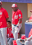 29 February 2016: Washington Nationals Manager Dusty Baker watches play during an inter-squad pre-season Spring Training game at Space Coast Stadium in Viera, Florida. Mandatory Credit: Ed Wolfstein Photo *** RAW (NEF) Image File Available ***