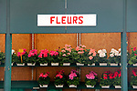Europe, France, Paris. Fleurs in the Marche aux fleurs, Paris.