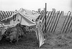 Free festival Stonehenge. Summer solstice 1976. Summer rain hippy sleeps in a makeshift tent...