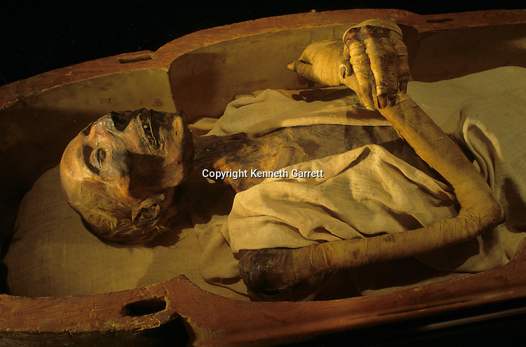 Mummy of Ramses II, 19th dynasty, New Kingdom.