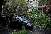 New York, New York<br /> September 16, 2010<br /> <br /> Park Slope after a severe storm and possible tornado. A tree on 3rd street between 8th and 7th Avenue.