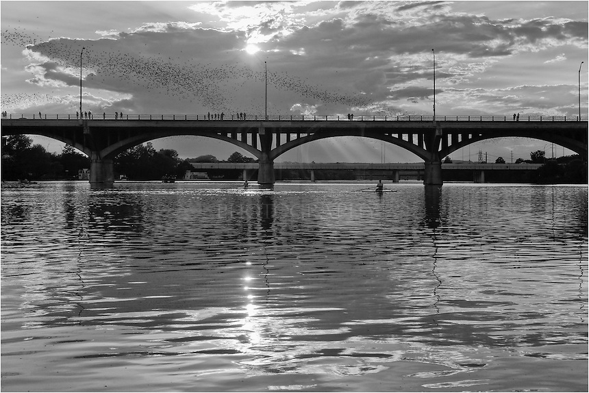 Austin bats are a summer icon. Here, the bates are emerging from Congress Bridge on a summer evening and heading out in search of their nightly meals.
