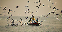 Tourists enjoying a boat ride and feeding a flock of birds in misty morning on the river Ganga in Varanasi.<br /> (Photo by Matt Considine - Images of Asia Collection)
