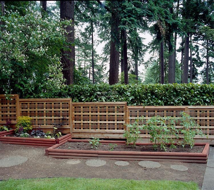 Fancy Backyard Fences : wooden fence in back yard decorative wooden fence in back yard