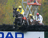 10/19/2014 - Far Hills Races