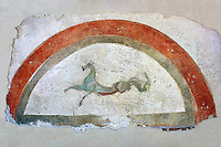 Roman fresco wall decorations from Villas of Rome depicting Pegasus. Museo Nazionale Romano ( National Roman Museum), Rome, Italy.