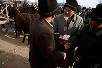 Uighur men walk and bargain among donkeys for sale at the Kashgar Sunday Animal Market in Kashgar, Xinjiang, China.