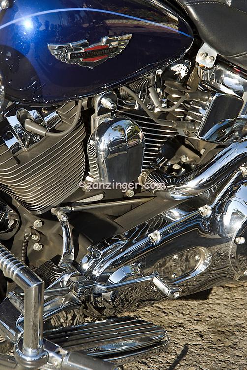 Custom Hot Rod Harley Motorcycles 502 x 750 · 329 kB · jpeg