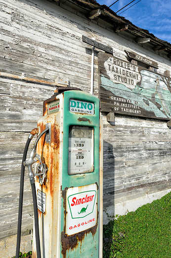 Sinclair gas is alive and well on this Pennsylvania farm, even though Dino has some rust around the edges mixed with the classic green. That's all right, it goes with the flaking white paint of the shed and the antique price of 30 cents a gallon, too. This was a very interesting find right along a country two lane road, and it shares space with the homegrown and nearly as worn taxidermy sign. They are two sights only found in rural America and certainly not often together no matter how far back in the jingweeds you go. Therefore, here we have the perfect piece of Podunk.<br /> <br /> Interestingly, the farmer told me that getting it to run is as simple as flipping a breaker on the electrical panel, but there's no fuel in the underground tank these days. The farmer is pretty much retired and the same vintage as the pump. He also said the white glass globe on top came with the pump when he bought it from a gas station undergoing a remodel, but ice sliding off the metal shed roof shattered it the first winter it came to live on the farm.<br /> <br /> Monthly Newsletter sign up at Dierks Photo on Facebook...