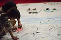 November 5th, 2011 : Tokyo, Japan &ndash; Children are painting and making their own artwork during 2011 Tokyo Designers Week. It is held in Meiji Jingu Gaien, from November 1st to 6th. The theme of this year is &ldquo;Love/ARIGATO&rdquo;. Designers, artists, and organizations express their ideas and their creative works such as contemporary art, music, unique goods and workshops during this show. (Photo by Yumeto Yamazaki/AFLO)