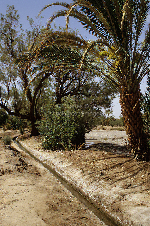 Skoura, Morocco - Irrigation Channel Parallel to Dry River Bed.  This area has had greatly reduced rain during the preceding eight years.