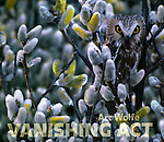 Vanishing Act: Camouflage in Nature