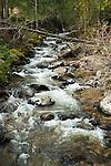 Snow Creek near Lions Den Rd.
