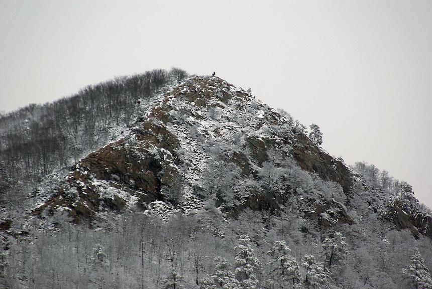 Snow on Pinnacle Mountain, Pinnacle Mountain State Park, Pulaski County, Arkansas