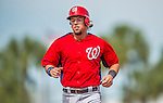 2 March 2013: Washington Nationals infielder Chris Marrero trots back to the dugout during a Spring Training game against the St. Louis Cardinals at Roger Dean Stadium in Jupiter, Florida. The Nationals defeated the Cardinals 6-2 in their first meeting since the NLDS series in October of 2012. Mandatory Credit: Ed Wolfstein Photo *** RAW (NEF) Image File Available ***