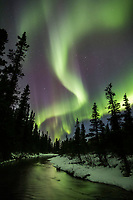 Northern lights reflect in a stream in the Alaska Range mountains, interior, Alaska.
