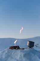 Jetboil Helios gassbrenner fyres opp ----- Jetboil Helios stove