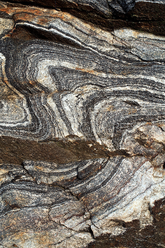 METAMORPHIC ROCK STRATA<br /> Folded Granite Patterns<br /> Fordham Gneiss, Banded Rock