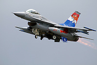 A Dutch F-16 fighter jet with tiger paint scheme. Nato Tiger Meet is an annual gathering of squadrons using the tiger as their mascot. While originally mostly a social event it is now a full military exercise. Tiger Meet 2012 was held at the Norwegian air base Ørlandet.