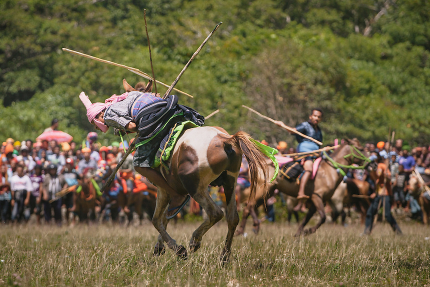 A Pasola warrior hit by an enemy spear during the event in Bondo Kawango, Kodi. Pasola is an ancient tradition from the Indonesian island of Sumba. Categorized as both extreme traditional sport and ritual, Pasola is an annual mock horse warfare performed in response to the harvesting season. In the battelfield, the Pasola warriors use blunt spears as their weapon. However, fatal accident still do occurs.