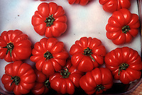 FOOD GROUPS: VEGETABLES - TOMATO<br /> Heirloom Tomatoes
