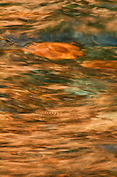 &quot;Lake Superior Shallows I&quot;<br />