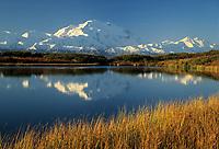 20, 3020+ ft. Mt. McKinley (locally called Denali) Autumn grasses, reflection pond, Denali National Park, Alaska