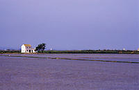 Spain. Levant. Near Valencia. Albufera. Flooded rice fields in lagoon..