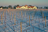 Raphael Vineyard, Peconic, New York, USA
