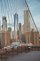 View of the skyscrapers of Downtown Manhattan from Brooklyn Bridge, which spans the East River, connecting Manhattan and Brooklyn, designed by John Augustus Roebling and opened in 1883, in New York, New York, USA. It was the first steel-wire suspension bridge constructed and one of the oldest bridges in the US. In the centre is One World Trade Center or Freedom Tower, designed by David Childs and built 2006-13 and opened 2014, on the site of the World Trade Center which was destroyed in the terrorist attack of 11th September 2001, Manhattan, New York, New York, USA. The building is the tallest skyscraper in the Western Hemisphere, and the 6th tallest in the world. Picture by Manuel Cohen